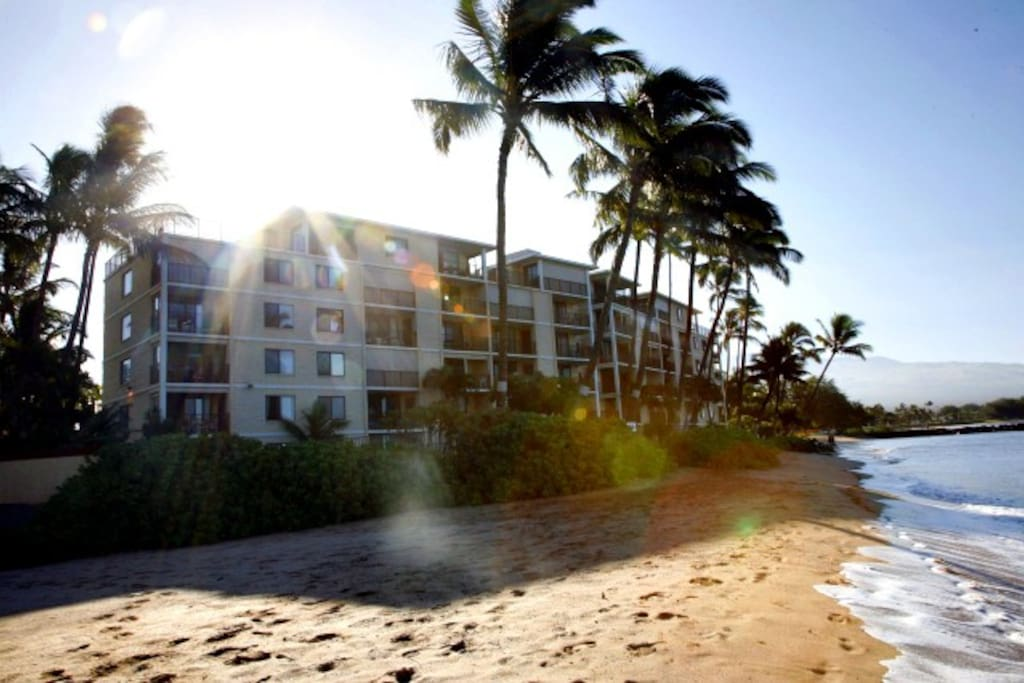 A view of the building from the beach. The perfect vacation destination!