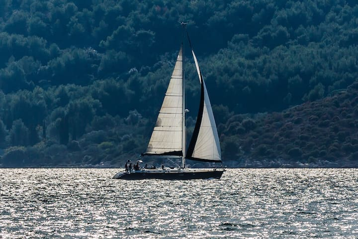 BT8 Beautiful Sailing Boat