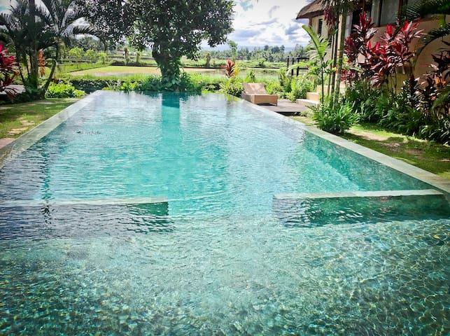The Absolute Dream 4 You  Ubud Bali - Ubud - Talo