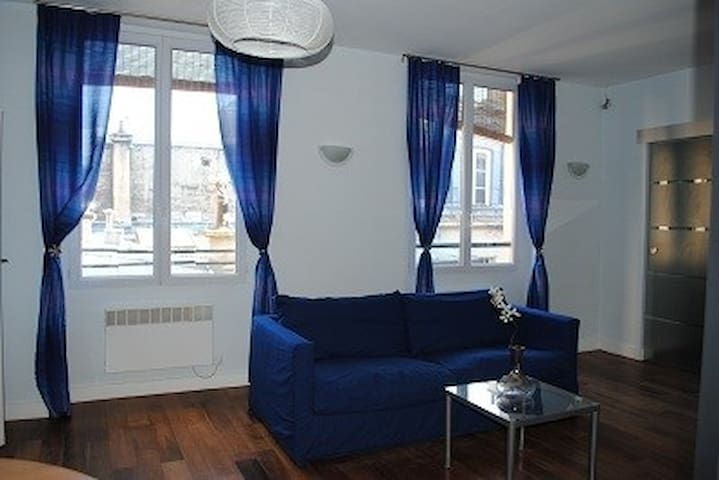 Beautiful Apartment Near to the Louvre