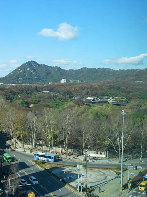 Changgyeong palace view from your window
