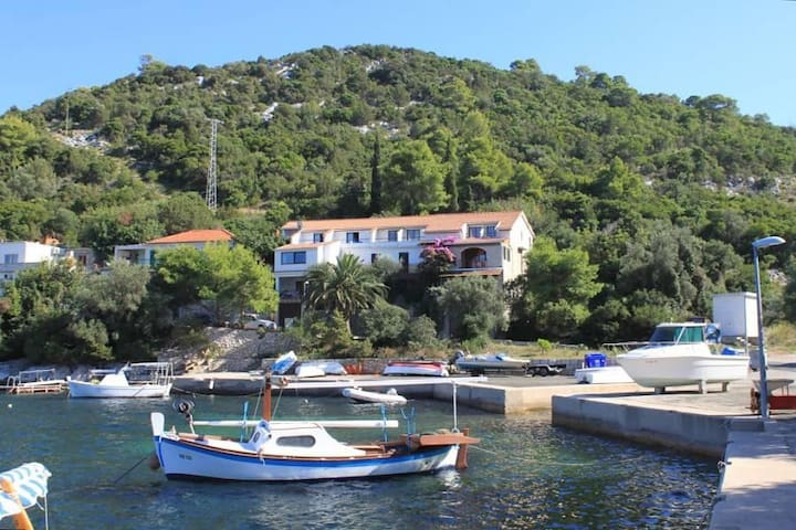 Studio flat near beach Zaklopatica, Lastovo (AS-8339-d) - Zaklopatica - Overig