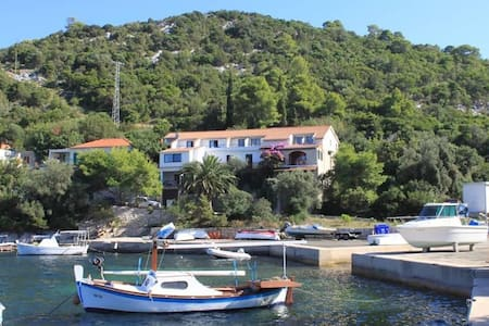Studio flat near beach Zaklopatica, Lastovo (AS-8339-d) - Zaklopatica