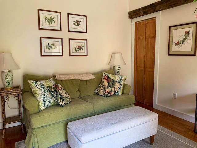 Extra bedroom with sofa bed