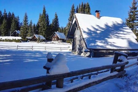 Chalet Pokljuka Vital, Slovenia - Goreljek - Casa