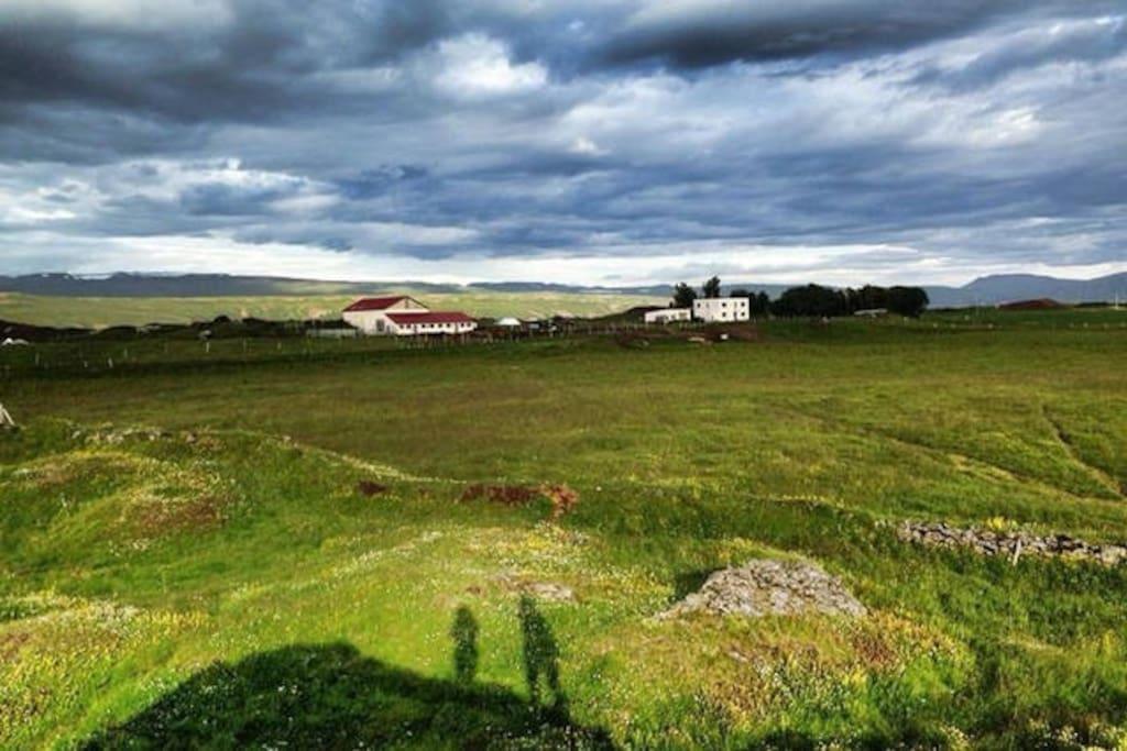 Farm Gardur