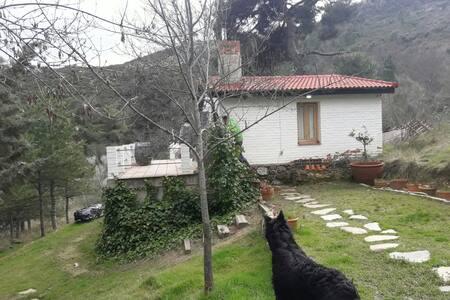 Casita en los montes de Robledo de Chavela
