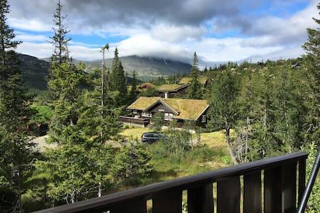 Solfylt og sjarmerende hytte - Rjukan
