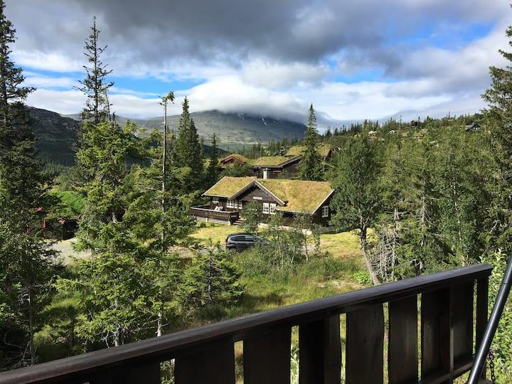 Solrik hytte for 2 familier/8 pers