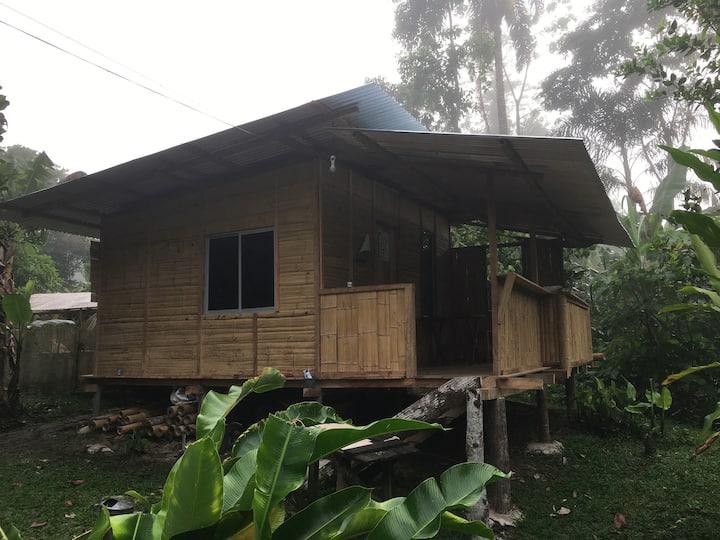convivencia cultural amazonico