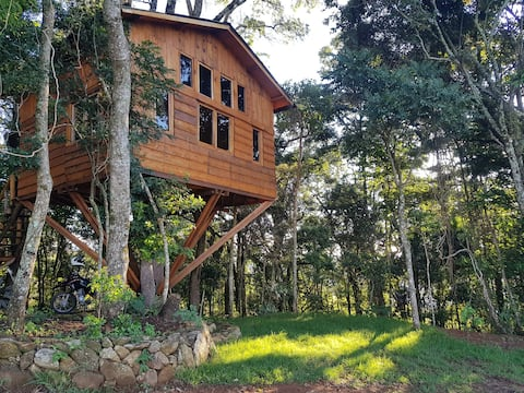Treehouse - Forest Refuge