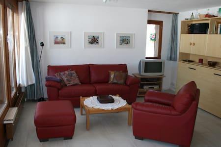 2 1/2 Zimmerwohnung in Lax - Lax - Appartement