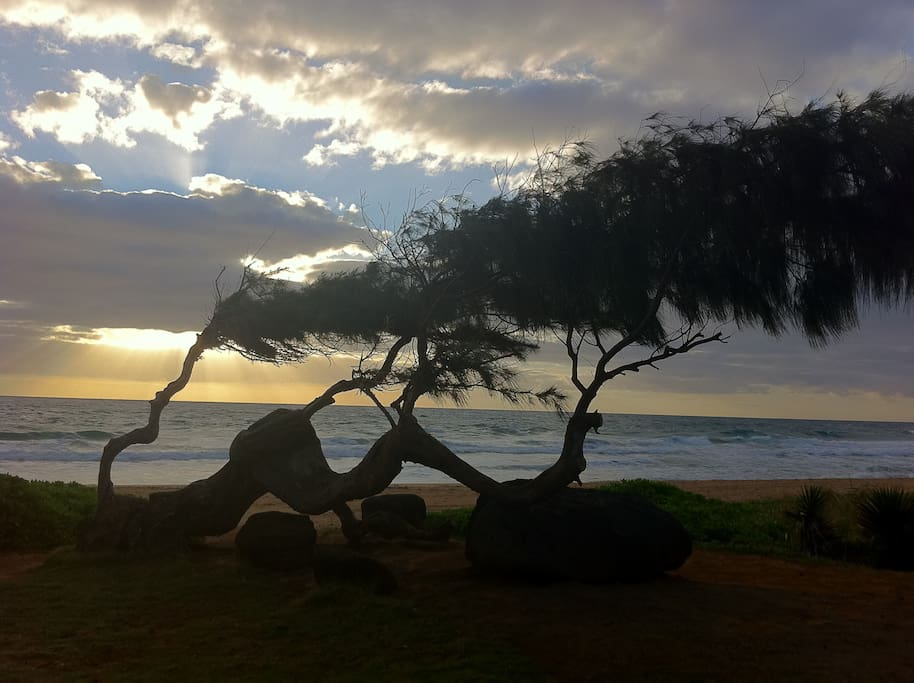 Kealia Beach ~1mile away