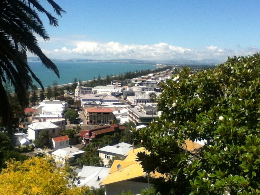 view of Napier from a lookout nearby