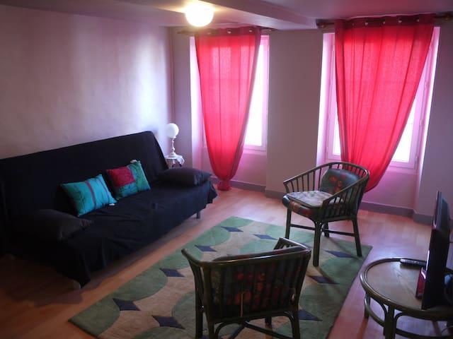 Salon avec canapé-lit et télé