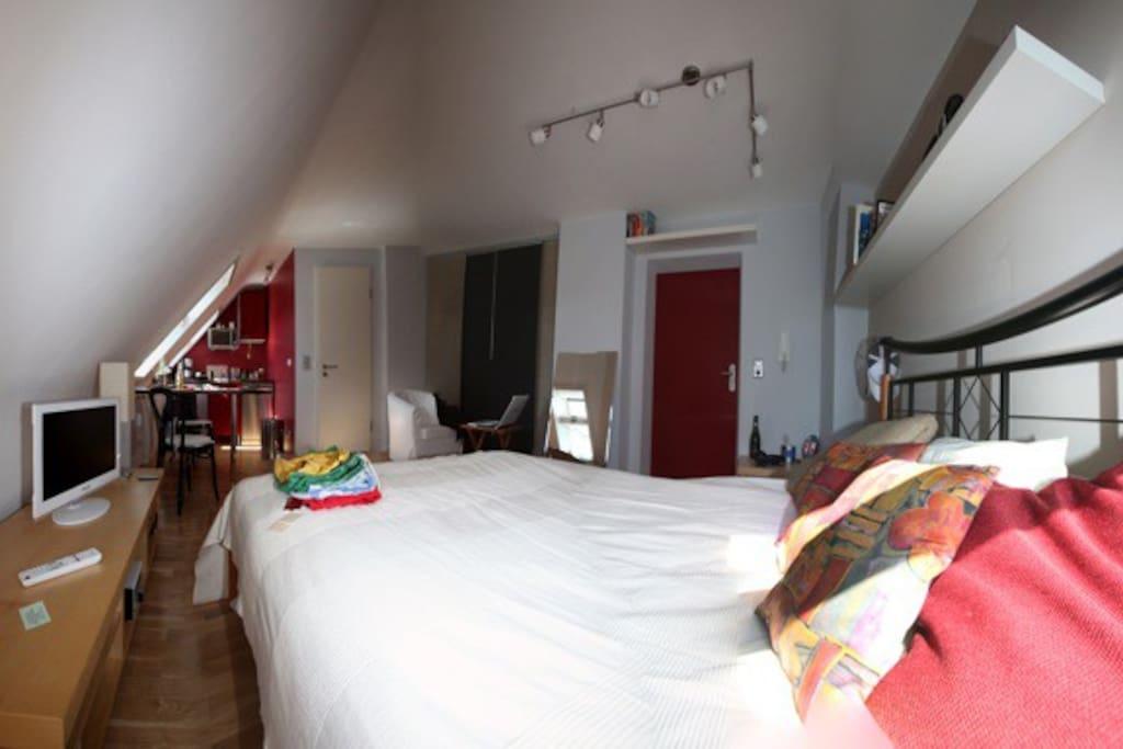 sonniges WohnSchlafzimmer, richtiges Bett 140x200cm, begehbarer Kleiderschrank, TV, HiFi, etc...