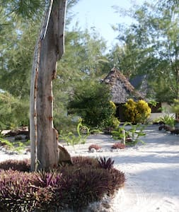 Relax in peaceful Milele Lodge - Michamvi Kae - Bed & Breakfast