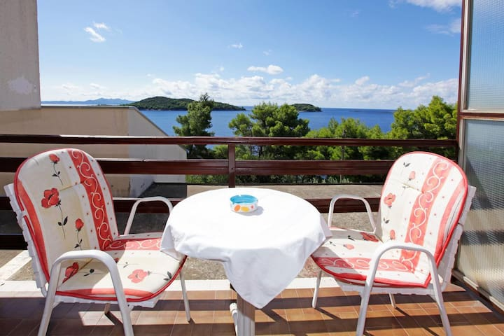 Studio flat near beach Prižba, Korčula (AS-12648-b)