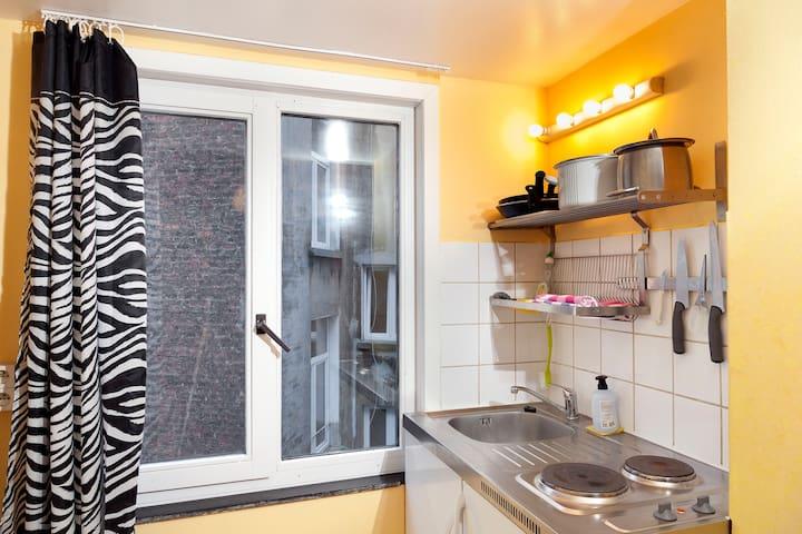 coin cuisine équipé d'un frigo et de deux plaques de cuisson