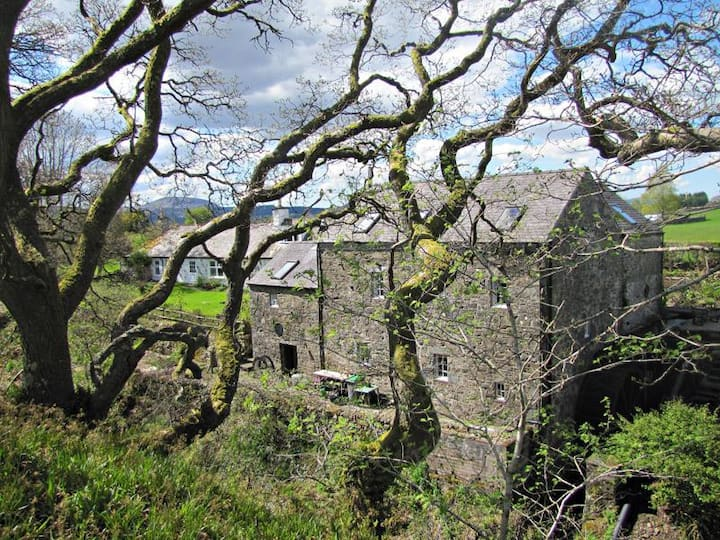 16th century watermill and ecospot