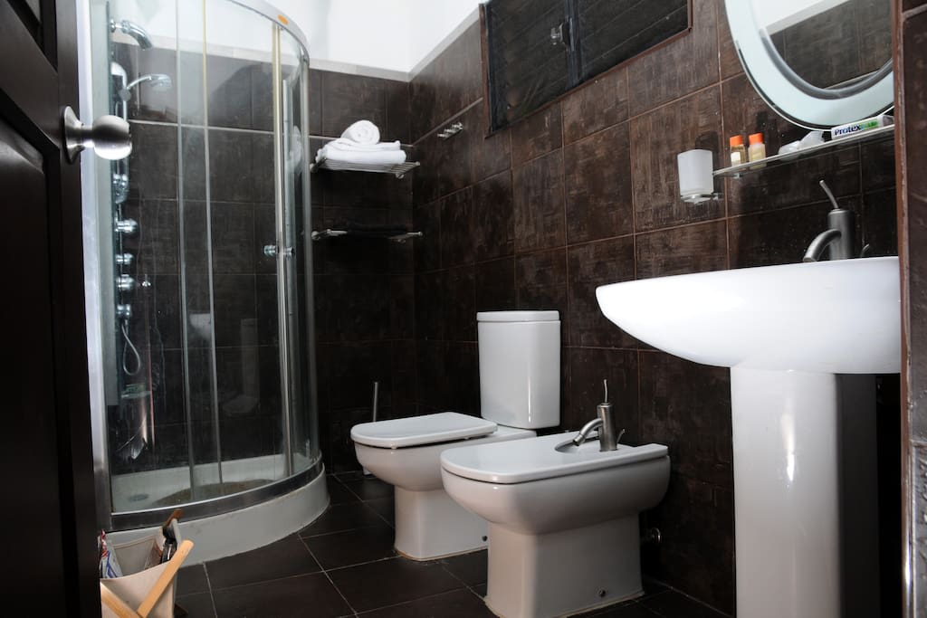 Private bathroom with shower and bidet