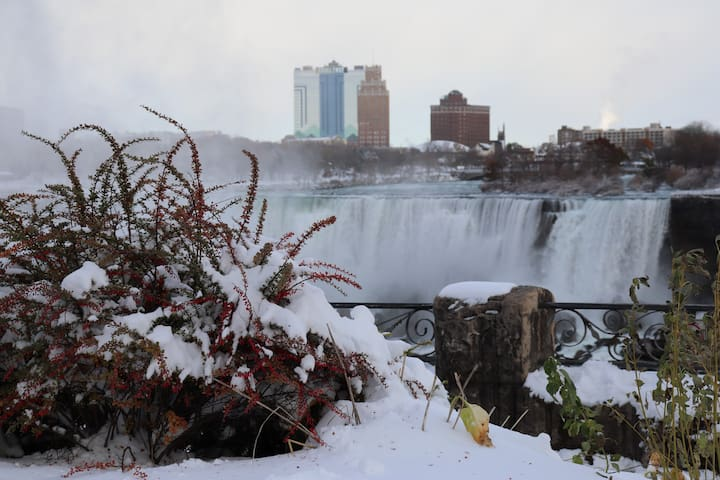 Niagara Falls. 14 million visitors pass through each year.  Winter brings a special time unlike the other seasons.