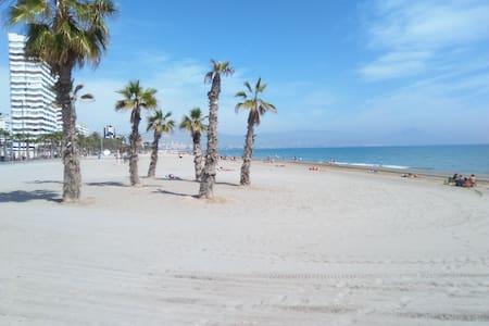 EL JARDIN DEL MEDITERRANEO 48 - Alacant