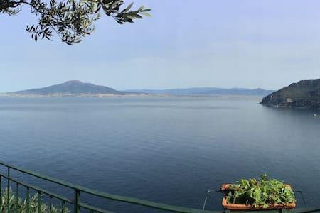 Villino Antonella - Appartamento a picco sul mare - Vico Equense