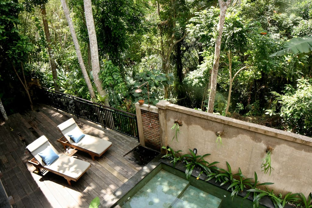 Wooden deck with view to the jungle