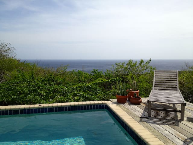 Privacy, oceanview & your own pool! - St Willibrordus - House