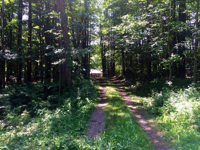 Cabin Comfort - Bloomville - Cabin