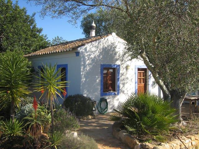Casa Eira à l'ombre de l'olivier