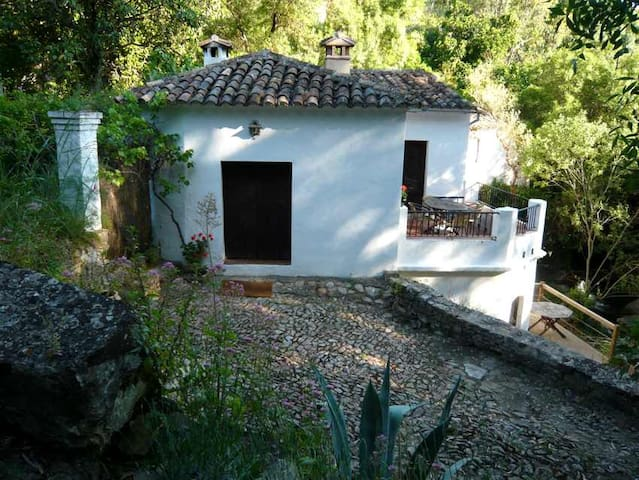 Refurbished farmhouse El Pastor - Grazalema - House