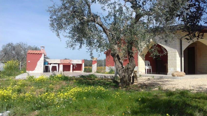 Villetta monofamiliare indipendente - Ginosa - Willa