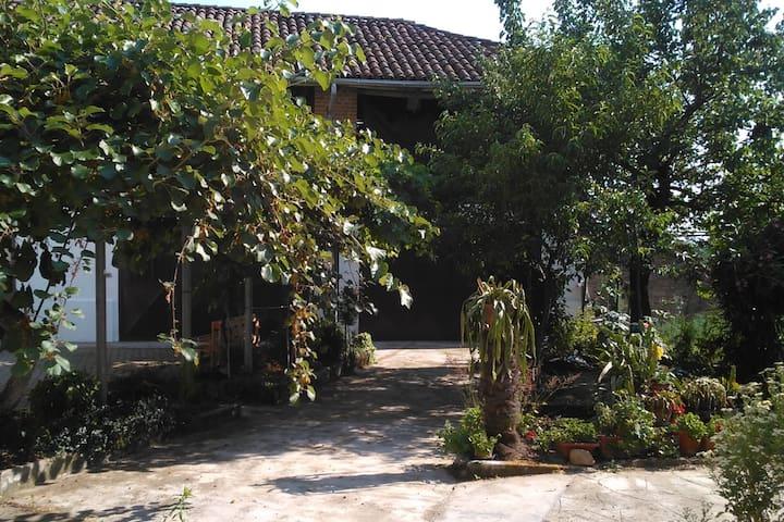 Casa Aromi ed Arte alloggio MENTA-LIME