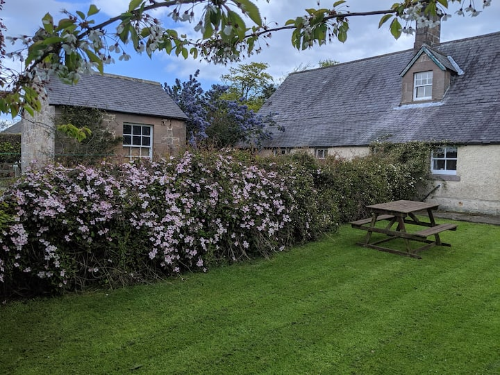 Rose Cottage(dog friendly) - West Fallodon