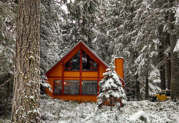 Cozy Cabin that Accommodates 10.
