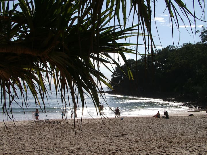 Nearby Noosa  & the Beach