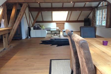 Schöne 90m2 Wohnung mit 45m2 Terrasse in Kitzbühel - Apartment