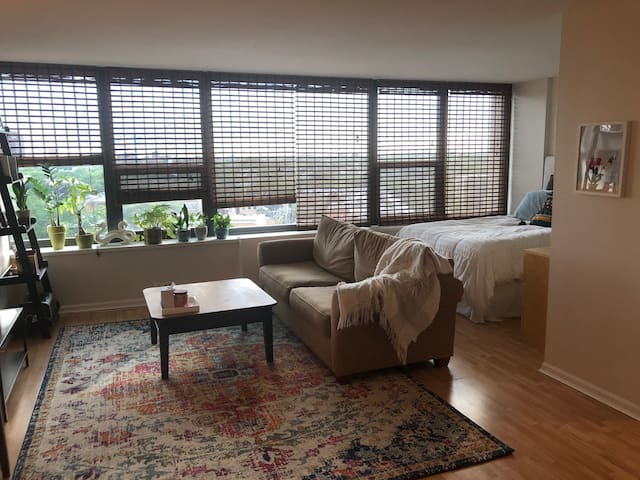 Bright Studio, Steps from Lincoln Park and Oldtown