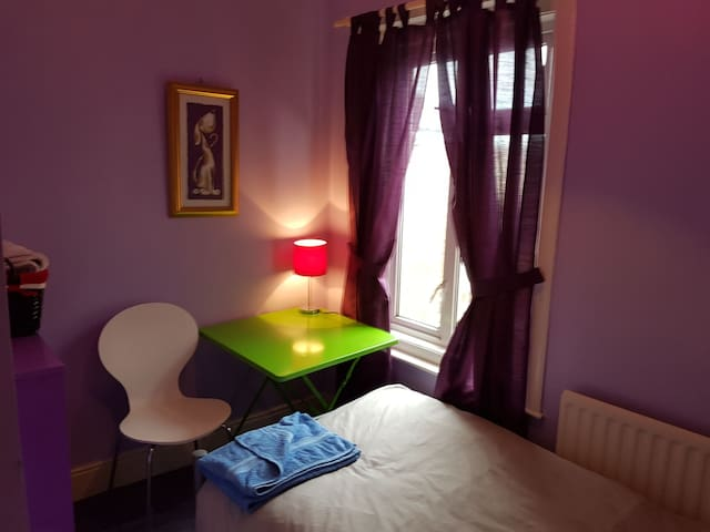 Eastleigh quiet single room in LGBT friendly home - Eastleigh - House