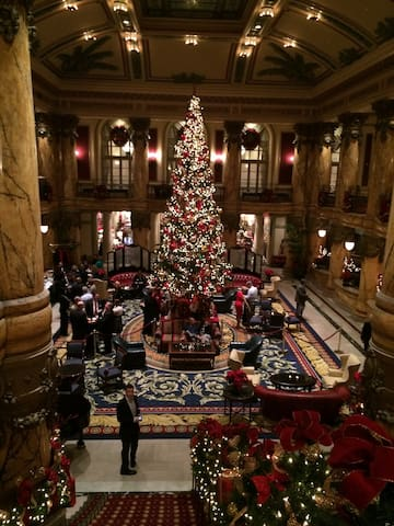 Isn't this spectacular! The Jefferson's lower lobby decorated for Christmas. TJH is a MUST SEE!