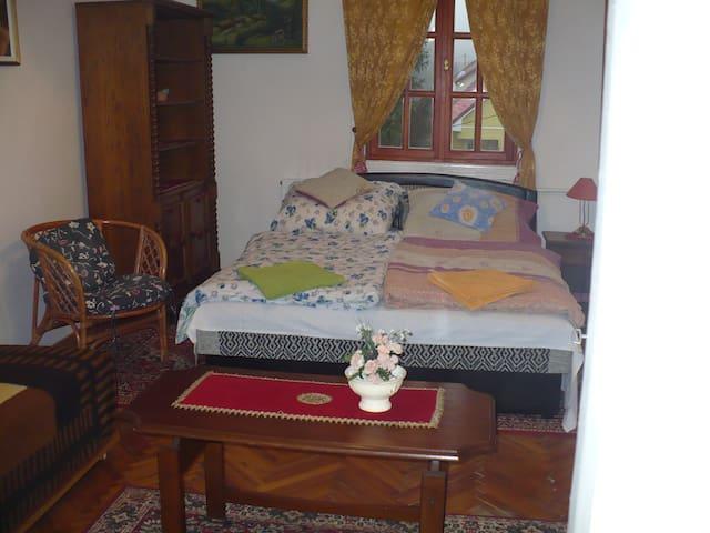 kéthálós tágas apartman - Miskolc - House
