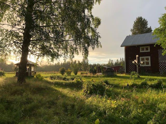 Northern Sweden forest retreat