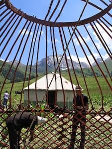 Authentic Nomadic Yurt Camp - At-Bashi  - Yurt