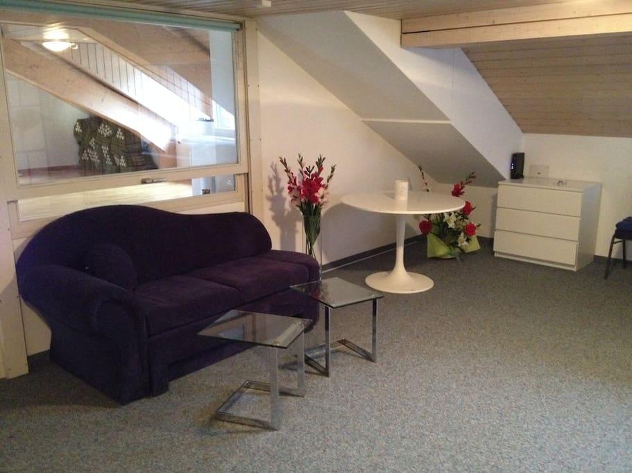 Wohnbereich mit Bettsofa welches auch als zusätzliches Doppelbett verwendet werden kann.