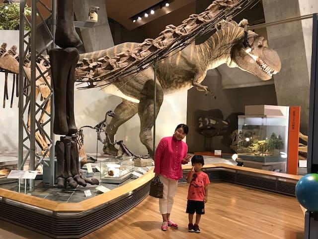 車で10分 【群馬県立自然史博物館】は子供から大人まで楽しめる施設