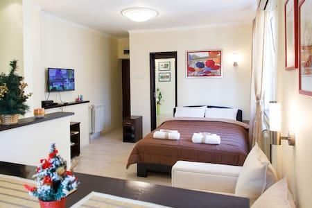 Champagne Studio Apartment - PROMO! - Belgrad - Huoneisto