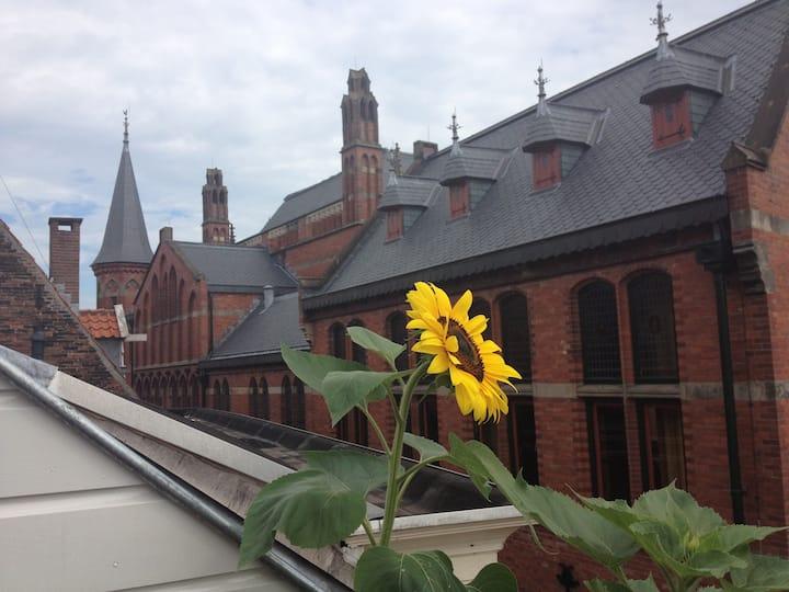 Modern Loft central Zwolle