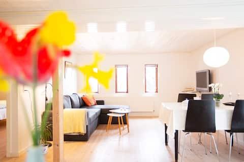 Light and roomy apartment in Tórshavn